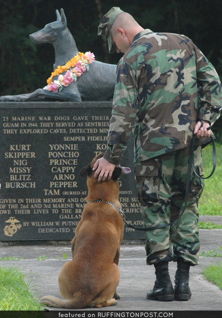Always Faithful, Doberman, Military Working Dog, MWD, World War II Memorial, War Dog Cemetery located on Navel Base Guam