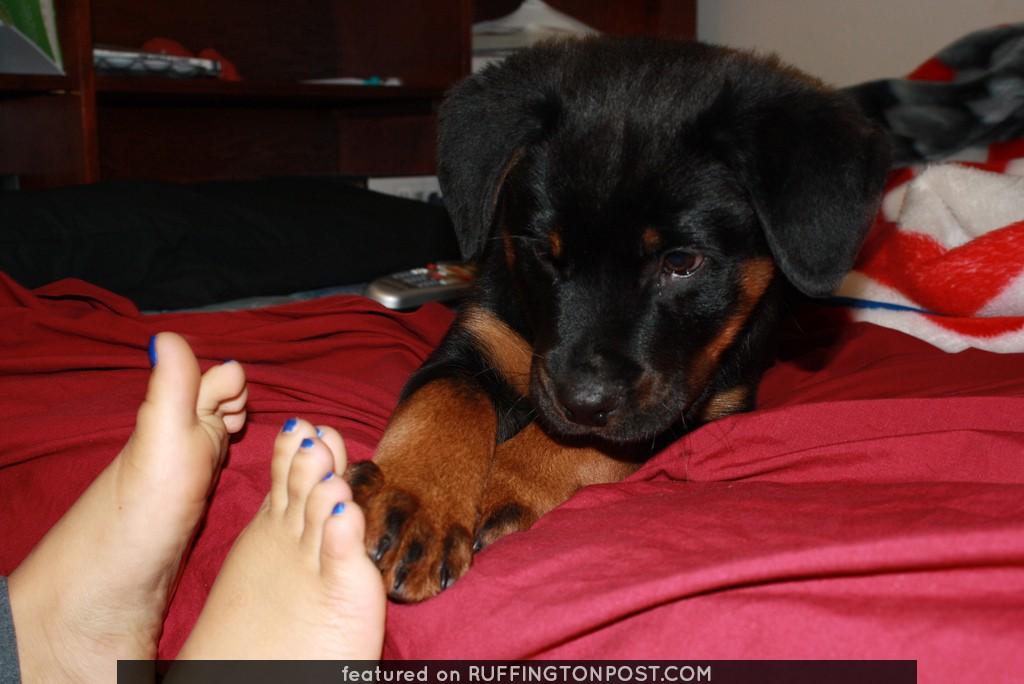 Stinky Feet?