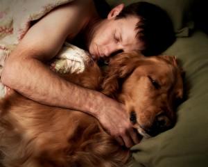 101 Dog Owner Responsibility Tips
