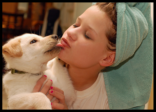 The Truth Behind Pet Kisses