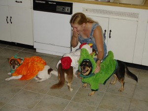 Did You Know About National Dress Up Your Pet Day