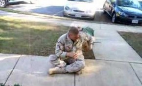 One Soldiers Reunion with His Fur Baby the Day He Got Home